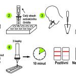 Postup-Ag-testu-ze-vzorku-slin